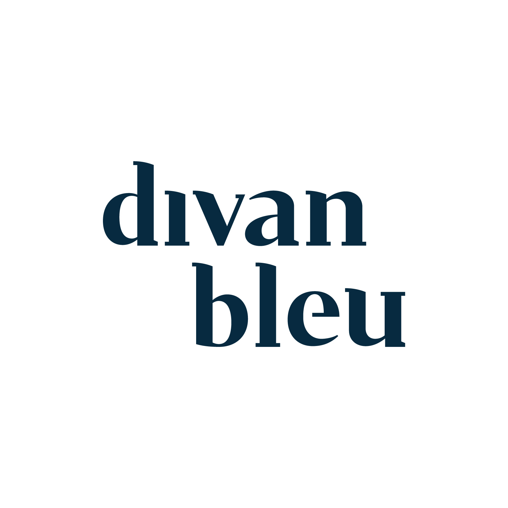 Divan bleu - Thérapie & Coaching