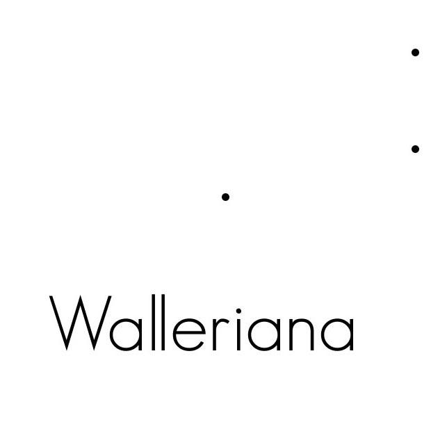 Walleriana