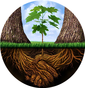 One Tree Psychological and Therapeutic Services