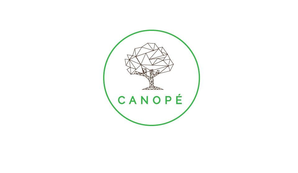 Canopé Design / Dodé immersif