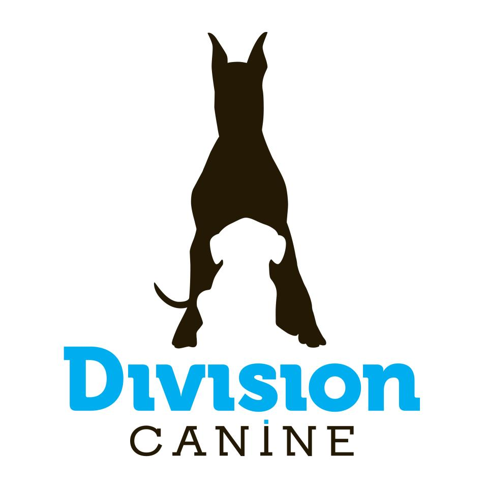 Division Canine