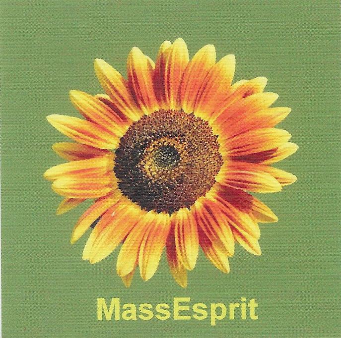 Massotherapie MassEsprit