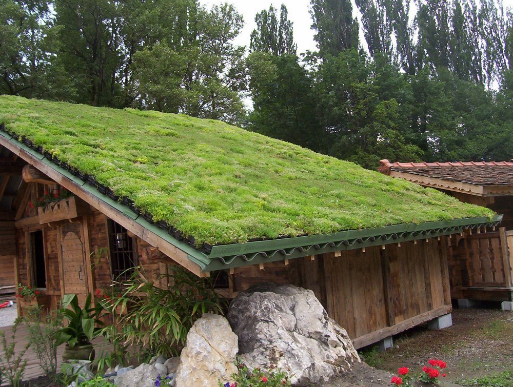 What You Didn T Know About Green Roofs Conscious Living Tv