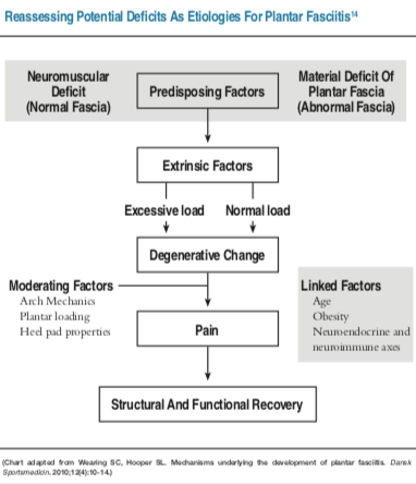This chart illustrates a revised model of plantar fasciitis for developing and evaluating treatment outcomes. Neuromuscular or intrinsic material deficits in the fascia lead to degenerative change with exposure to an external risk factor. How degenerative change leads to pain is yet to be determined but plantar loading and arch and heel pad mechanics act to moderate pain.