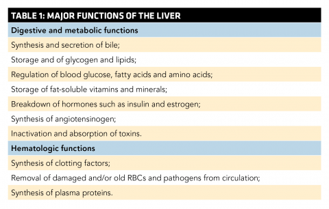 Cirrhosis And Its Complications Ems World