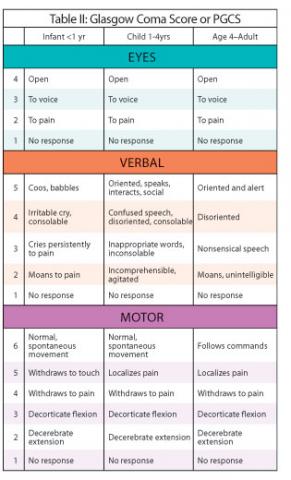 Beyond the Basics: Pediatric Assessment | EMS World