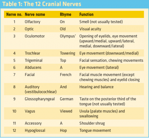 neurotrauma review series part 1 why evaluate the cranial nerves ems world. Black Bedroom Furniture Sets. Home Design Ideas