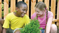 Planting the Seeds of Peace: Exploring and Celebrating Our Differences