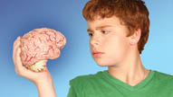 All You Need to Know about Drugs and the Teen Brain in 17 Minutes