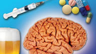 Everything You Need to Know about Drugs and the Teen Brain in 22 Minutes