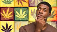 Marijuana: Just the Facts Please