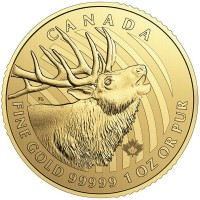 RCM Call of the Wild Elk - 1 Troy Oz .99999 Gold