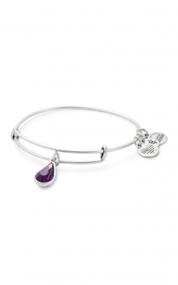 February Birth Month Charm Bangle With Swarovski Crystal product image