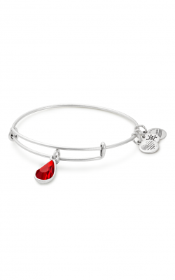 July Birth Month Charm Bangle With Swarovski Crystal product image