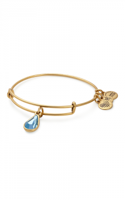 March Birth Month Charm Bangle With Swarovski Crystal product image
