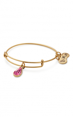 October Birth Month Charm Bangle With Swarovski Crystal product image