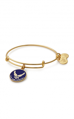 U.S. Air Force Charm Bangle product image
