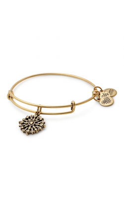 Compass Charm Bangle product image