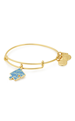 You Complete Me Charm Bangle | National Autism Association product image
