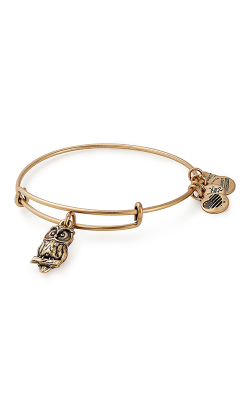 Owl Charm Bangle | Flying Kites product image
