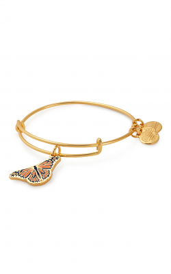 Monarch Butterfly Charm Bangle | Roger Williams Park Zoo product image