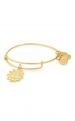 You Are My Sunshine Charm Bangle | Childrens Glaucoma Foundations product image