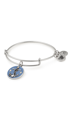 Anchor Color Infusion Charm Bangle product image