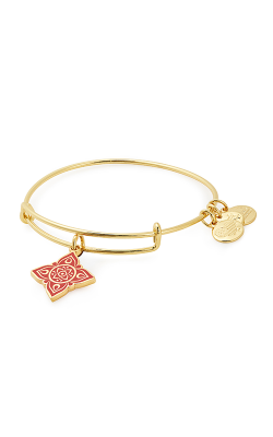 Root Chakra Charm Bangle product image