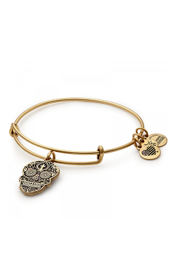 Calavera Charm Bangle product image
