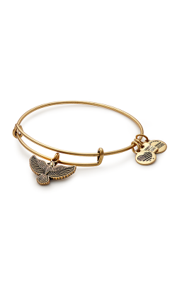 Spirit Of The Eagle Charm Bangle product image