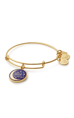Stellar Love Charm Bangle product image