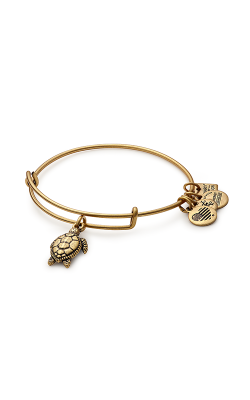 Sea Turtle Charm Bangle product image
