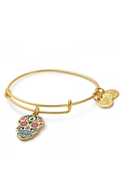 Calavera Color Infusion Charm Bangle product image