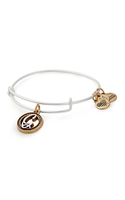 Initial G Two Tone Charm Bangle product image