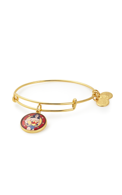 Wonder Woman Charm Bangle product image
