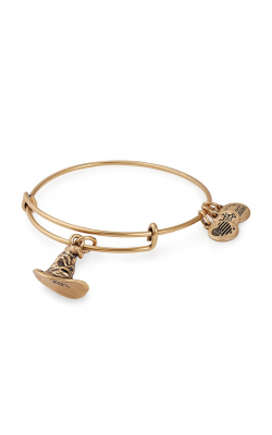 HARRY POTTER™ SORTING HAT™ Charm Bangle product image