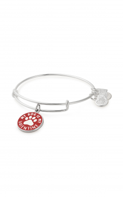 My Dog Is My Valentine Charm Bangle | Best Friends Animal Society product image