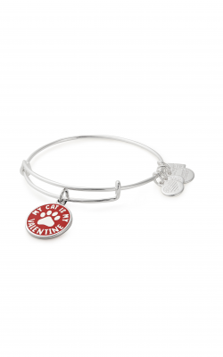 My Cat Is My Valentine Charm Bangle | Best Friends Animal Society product image