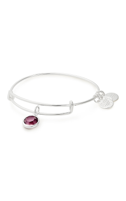 Swarovski Color Code February Bangle product image