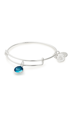 Swarovski Color Code December Bangle product image