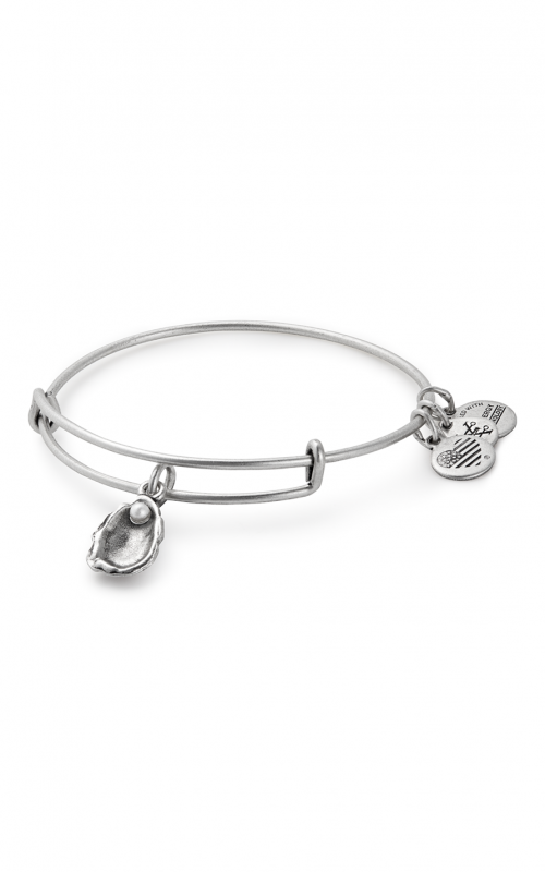 Oyster Charm Bangle product image