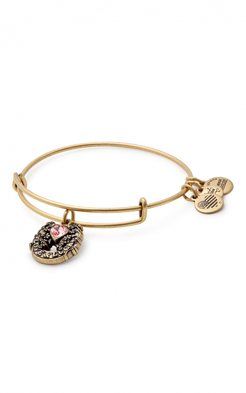 Fortune's Favor Charm Bangle product image