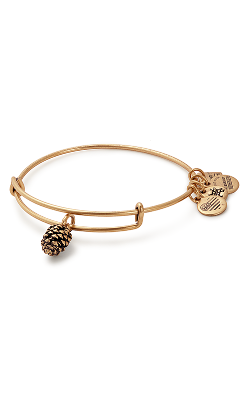 Pinecone product image