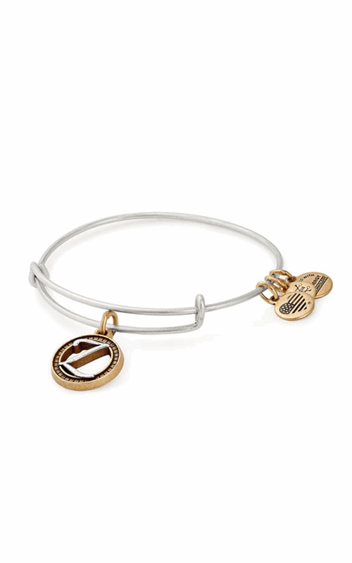 Initial Z Two Tone Charm Bangle product image