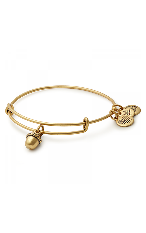 Unexpected Blessings Charm Bangle product image