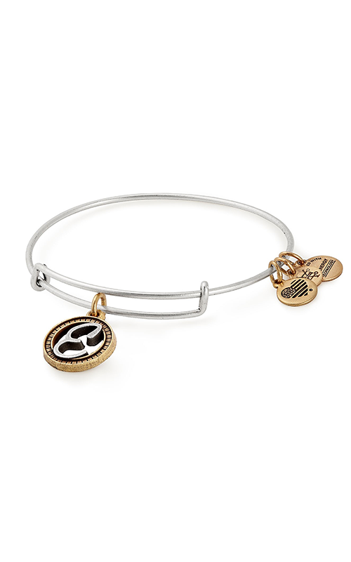Initial E Two Tone Charm Bangle product image