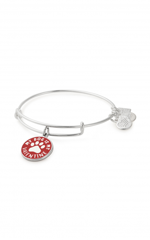 My Dog Is My Valentine Charm Bangle   Best Friends Animal Society product image