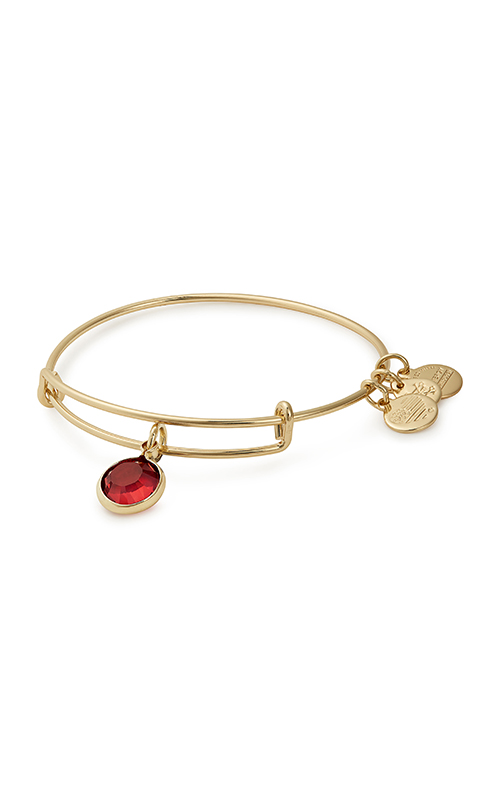Swarovski Color Code January Bangle product image