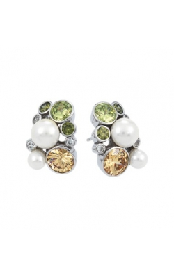 Belle Etoile Potpourri Fall Earrings product image