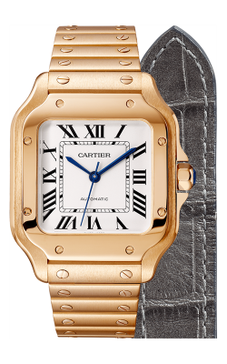Cartier Santos De Cartier Watch WGSA0008 product image
